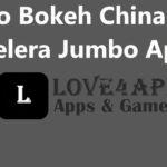Video Bokeh China Boss Berselera Jumbo Apk For Android, iOS & PC